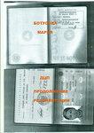 паспорт маша.jpg