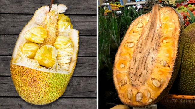 © depositphotos   Удерева джекфрут самые большие плоды, вес которых достигает 35кг, а