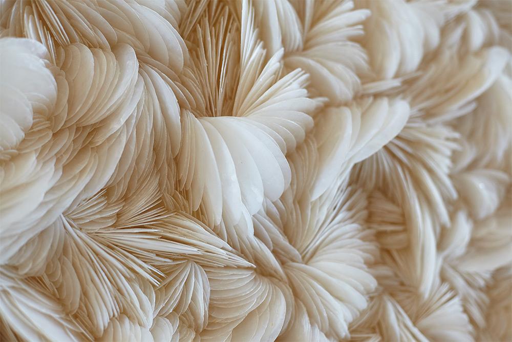 Placuna Phoenix IV , detail.