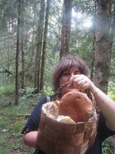 Зеленоградская грибы я.JPG