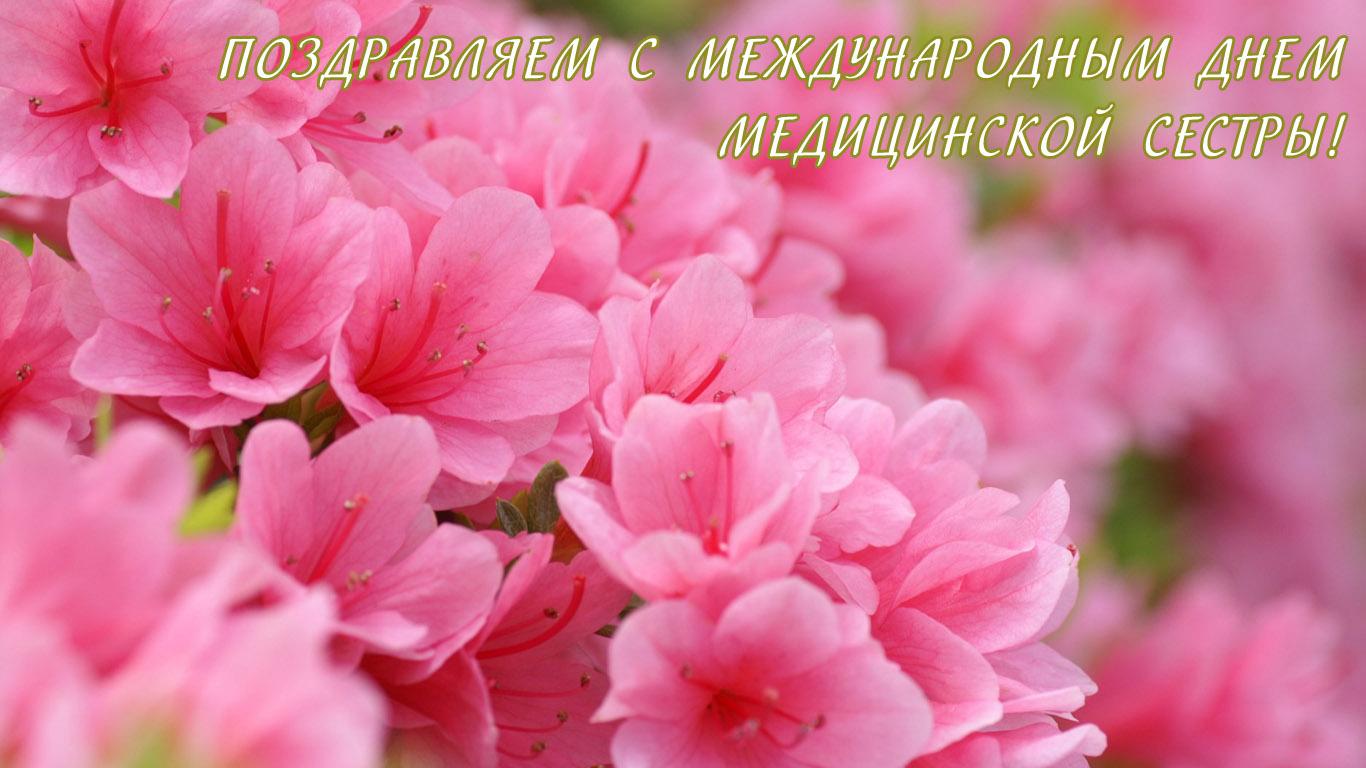 Открытка с Международным днем медицинской сестры! Розовые цветы открытки фото рисунки картинки поздравления