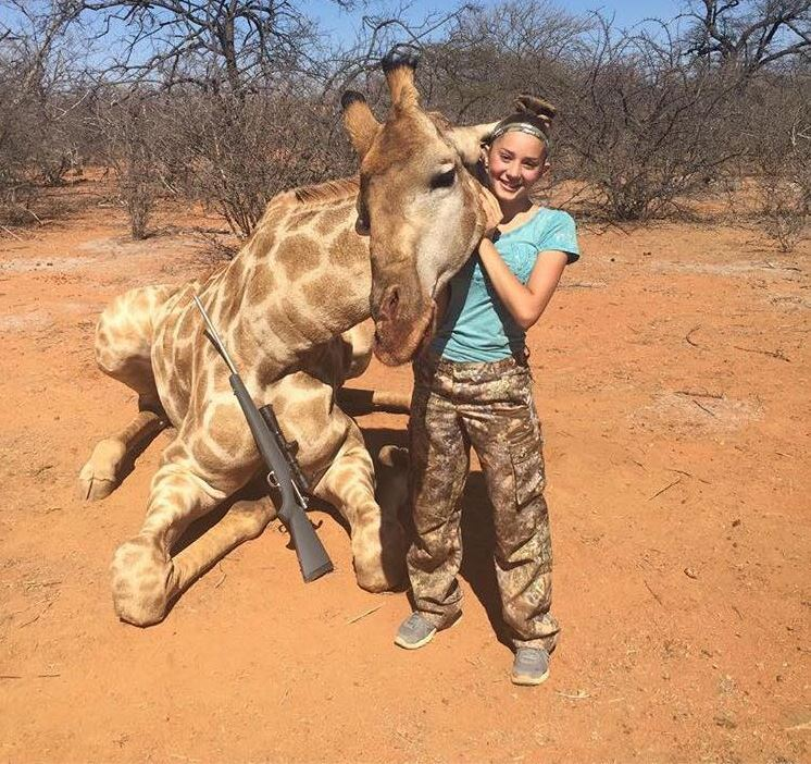 Девочка с ангельской внешностью говорит, что не сожалеет, что застрелила огромного жирафа, зебру и а