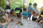 20 июня Экологическая викторина в Мытищинском благочинии