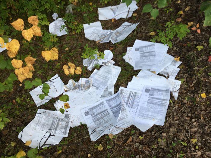 В лесу обнаружили письма, выброшенные Почтой России