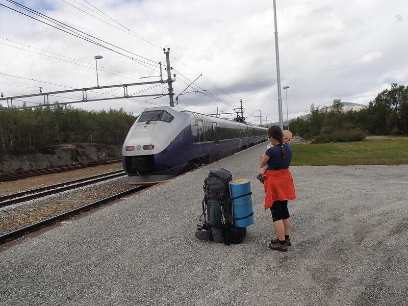 поезд на станции Hjerkinn