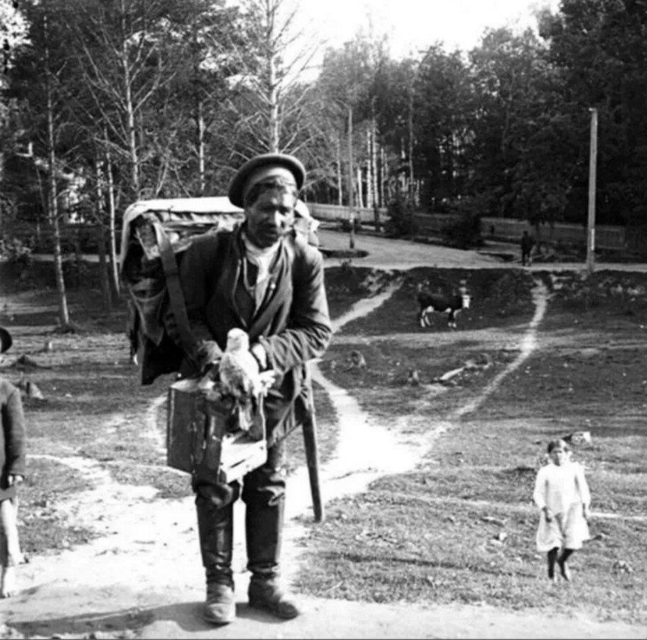 1910. Шарманщик с попугаем