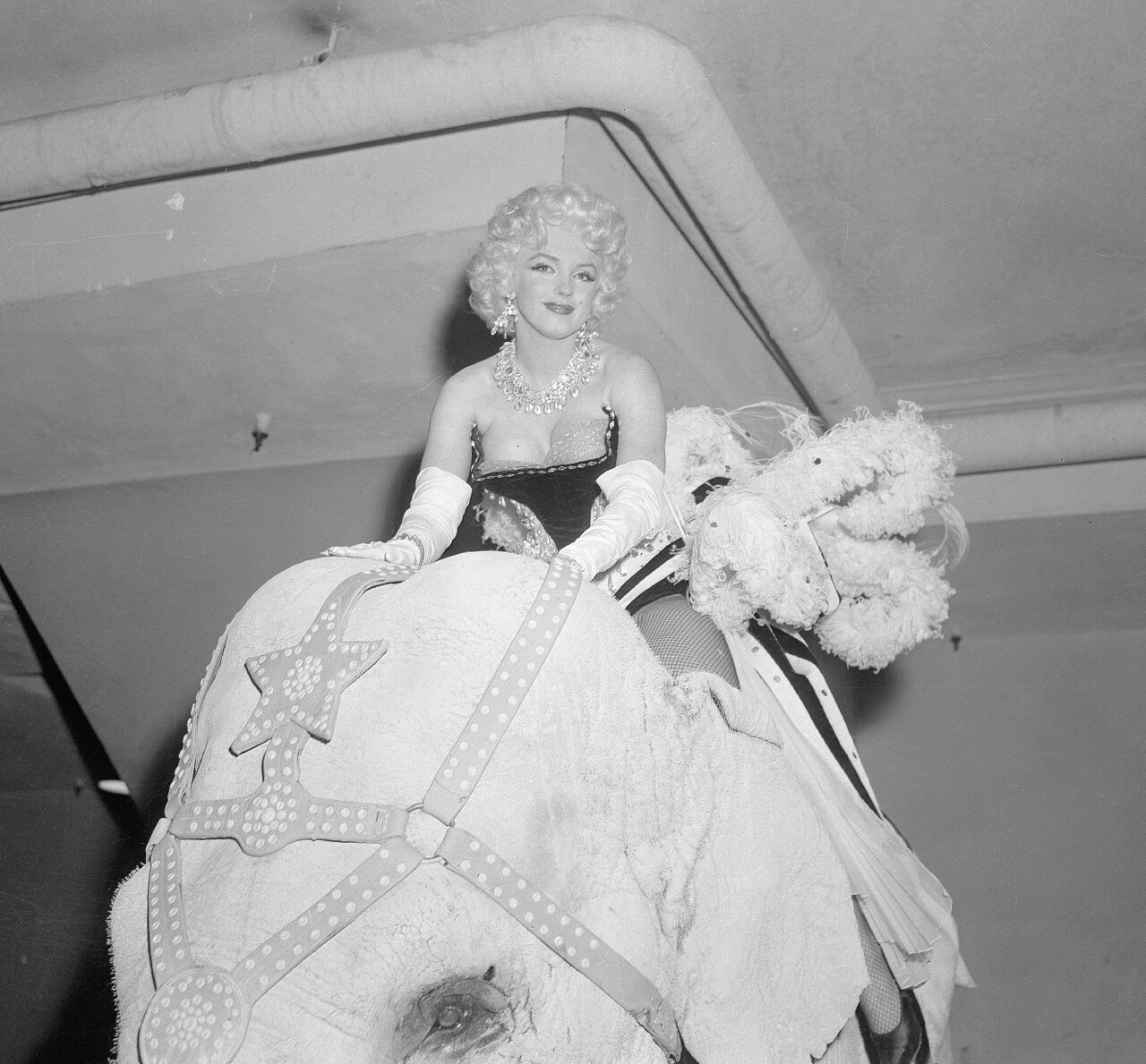 Marilyn Monroe Riding Elephant