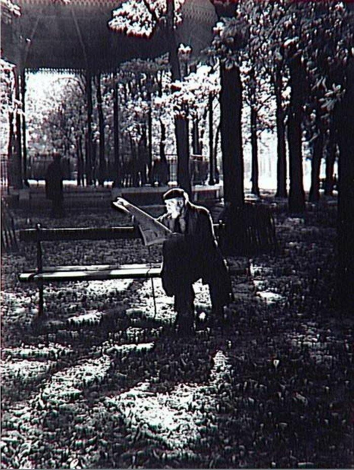 1937. Профессор читает газету в Люксембургском саду