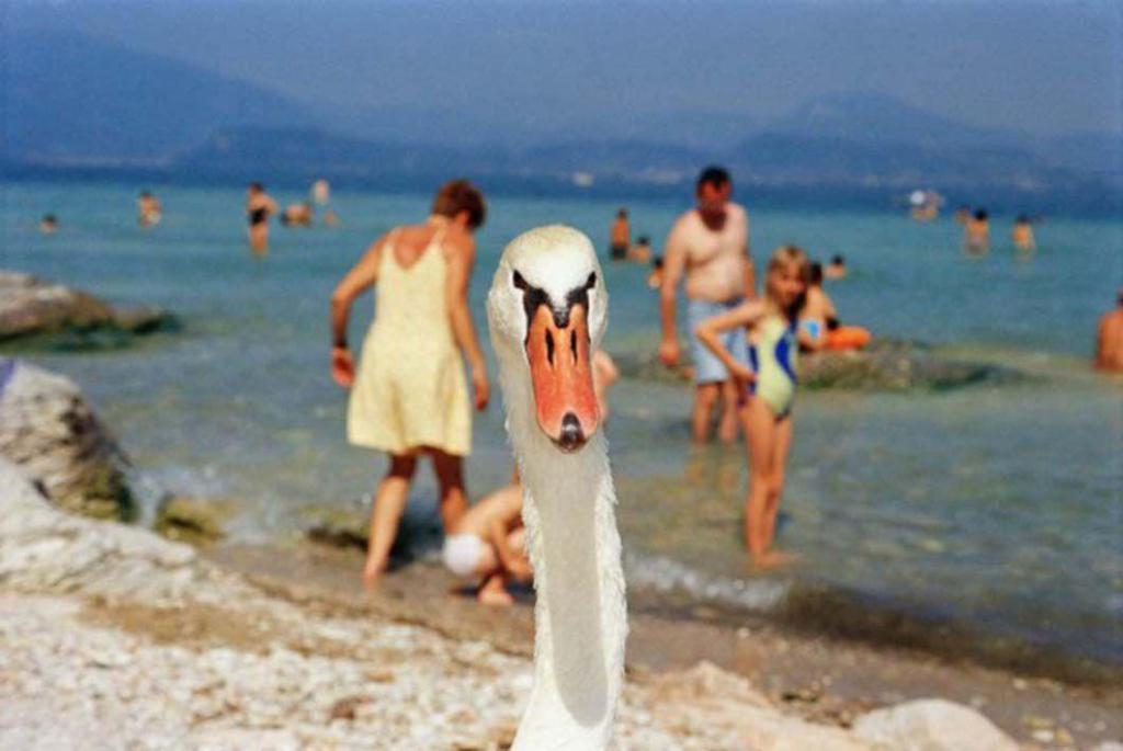 К теме пляжей этот автор был неравнодушен с тех самых пор, когда в его руках впервые оказался фотоап