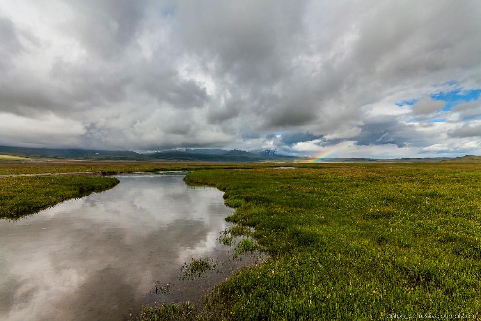3. А на берегах бесчисленных рек буяло разноцветье. В этом году просто невероятное буйство крас