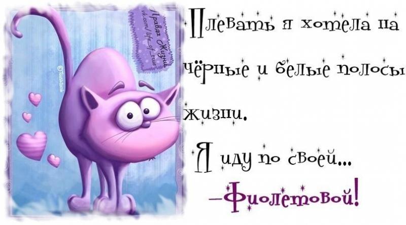 1372189894_frazochki-26.jpg