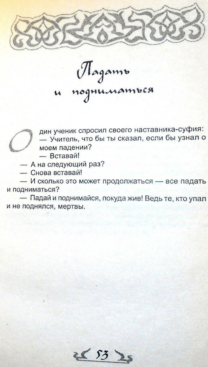 Если ты не ОСЁЛ, или как узнать СУФИЯ (44).JPG