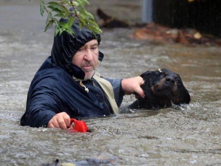 Как люди спасают животных 0 12cfe5 4a802951 orig