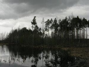 13-25 апреля 2015 - Всеволожский р-он Ленобласти
