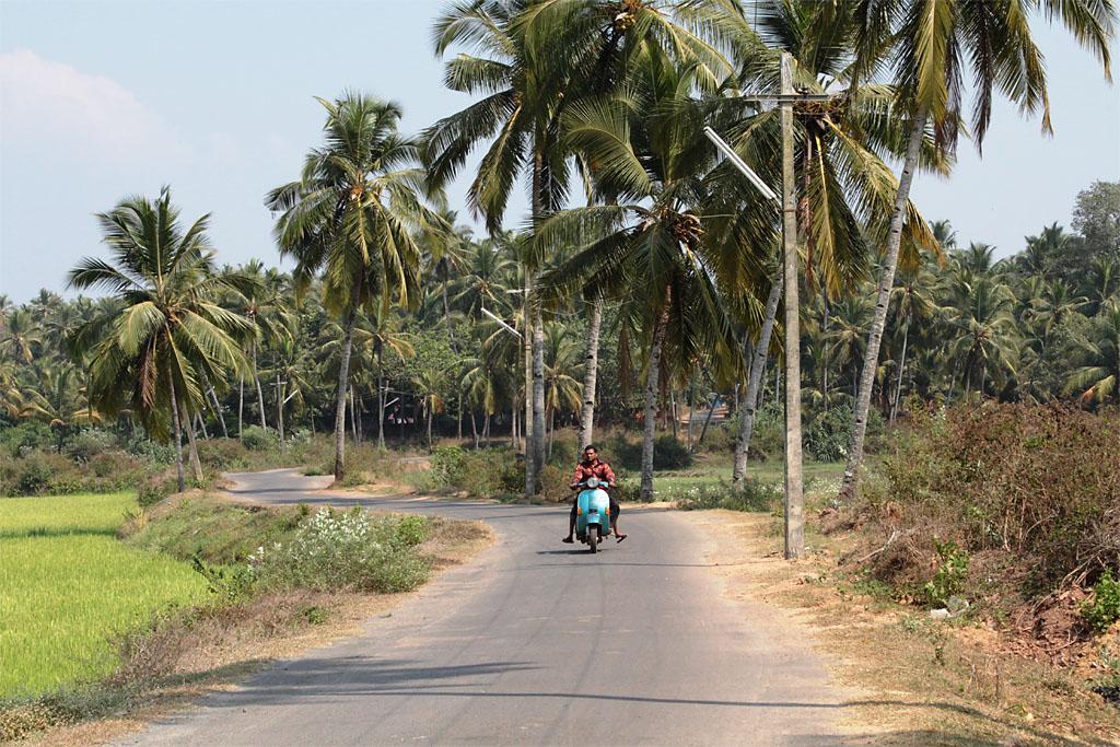 Фото 12. На дорогах Гоа. Чем заняться на отдыхе в Индии