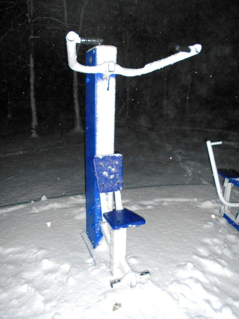 Вечер, снег, тренажер ... DSCN3554.JPG
