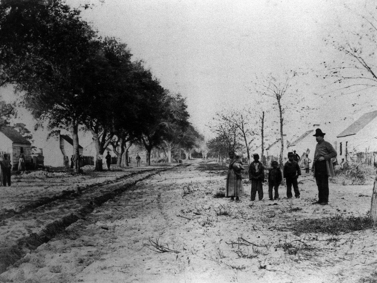 1869. Район проживания негров. Каролина