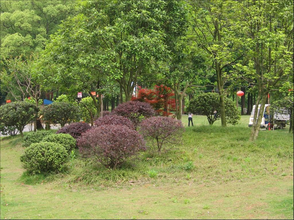 Ботанический сад, Ухань