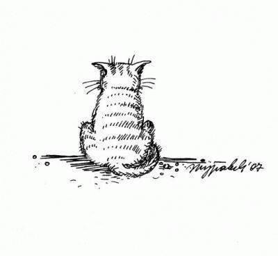 18 праваил котов. Пост для любителей котообразных