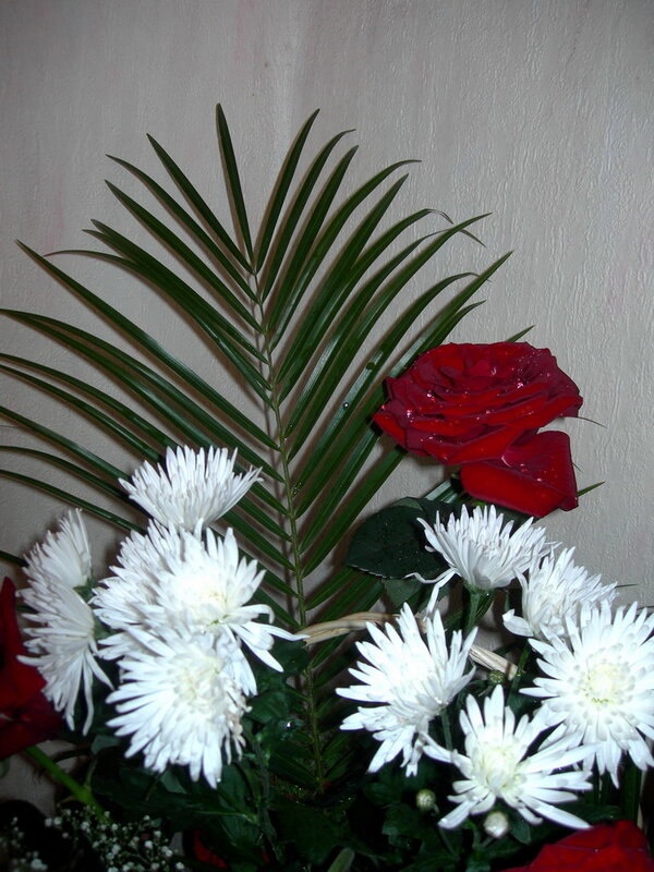 Фотография : Букет, фотограф Апарышев, день рождения, поздравление, цветок, цветы, юбилей, фотография, фото, flows, фотки.