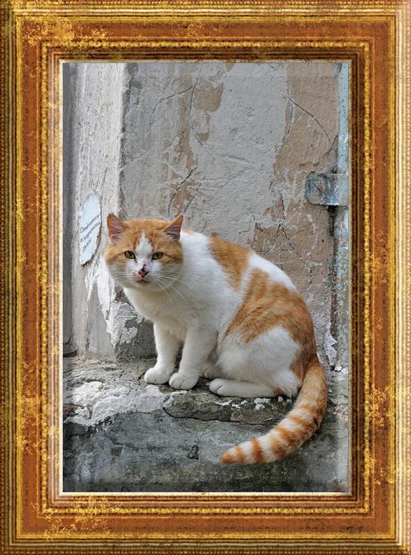 http://img-fotki.yandex.ru/get/11/presmyka.1/0_9b8d_aa123e96_XL.jpg