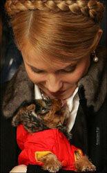 Юлия Тимошенко занялась разведением собак
