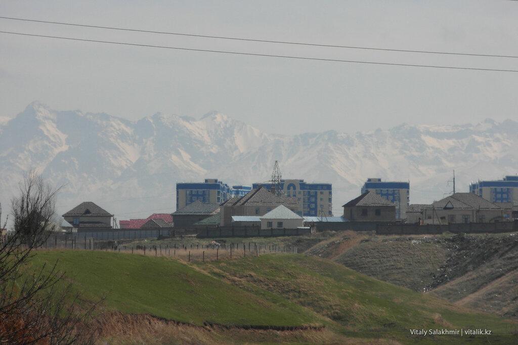 Горы напротив дендропарка в Шымкенте