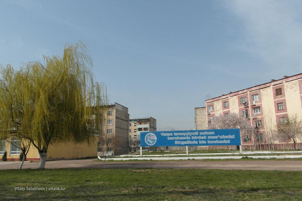 Около Ташкента Узбекистан