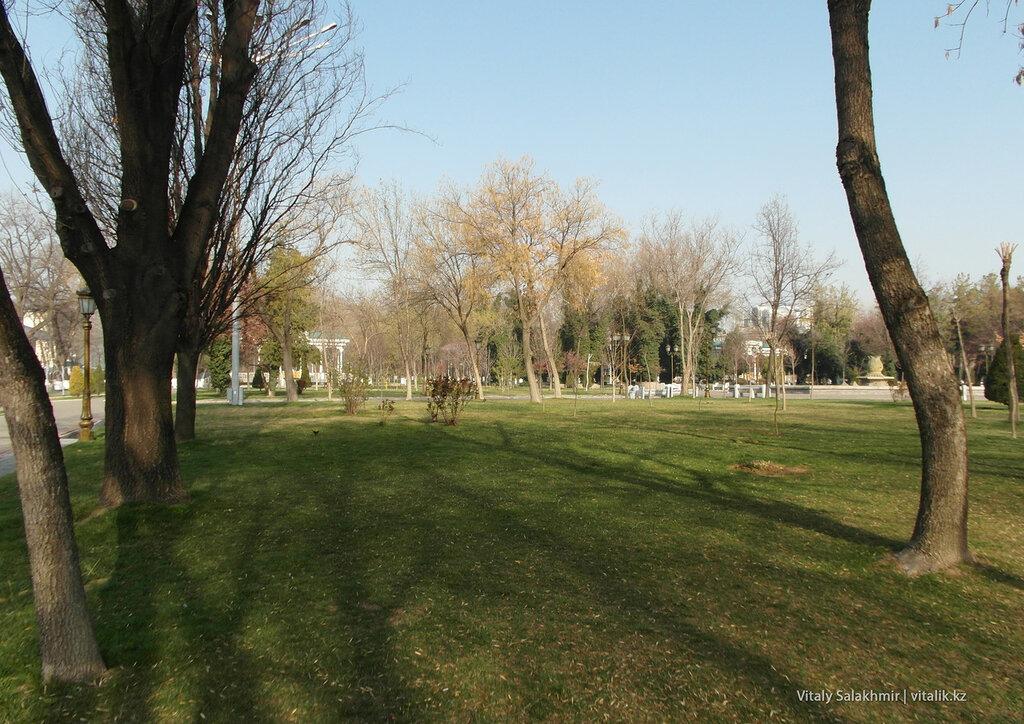 Зеленая трава, Ташкент, Узбекистан