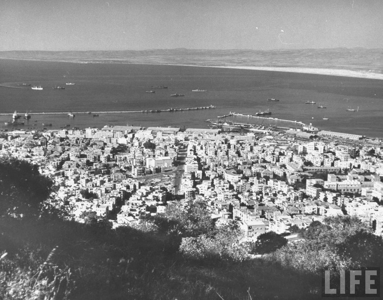 Вид на Хайфу с горы. Кармель в июне 1948 года