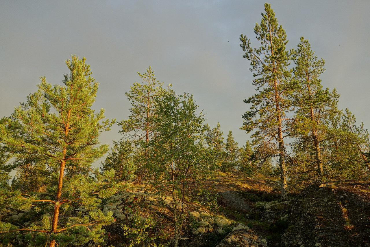 блаженный час перед закатом