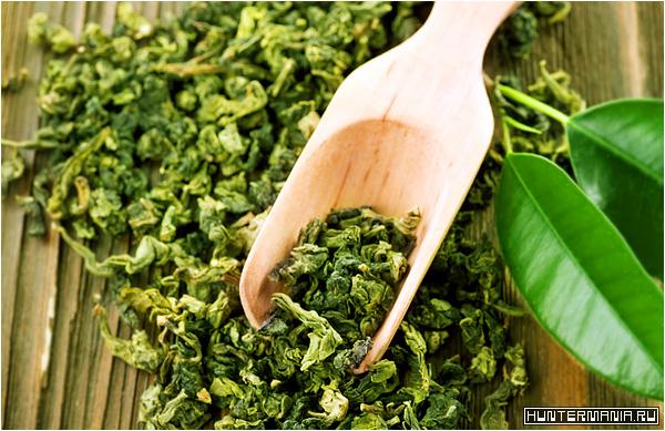 Когда и почему зеленый чай теряет свои полезные свойства