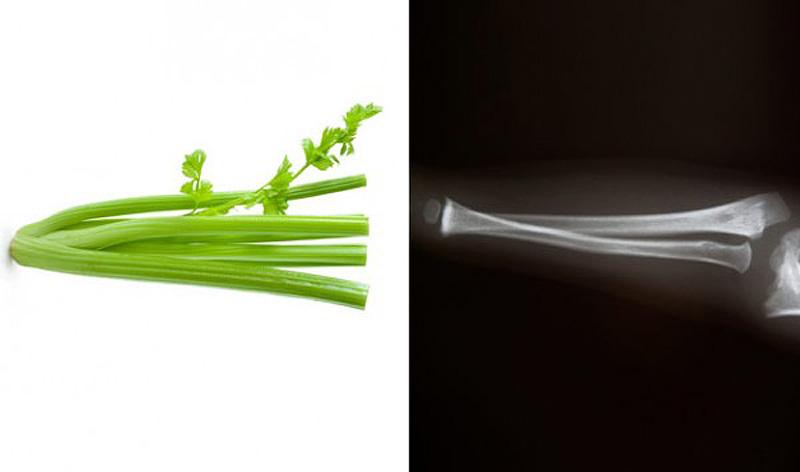3. Сельдерей — кости Длинные тонкие стебли сельдерея похожи на кости — и очень для них полезны. Сель