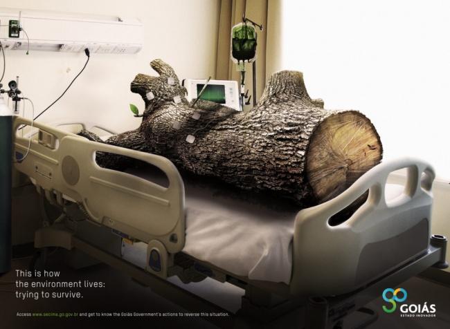 © adofdamonth  © Box Comunicacao  Реклама, которая напоминает, что отвырубки лесов пост