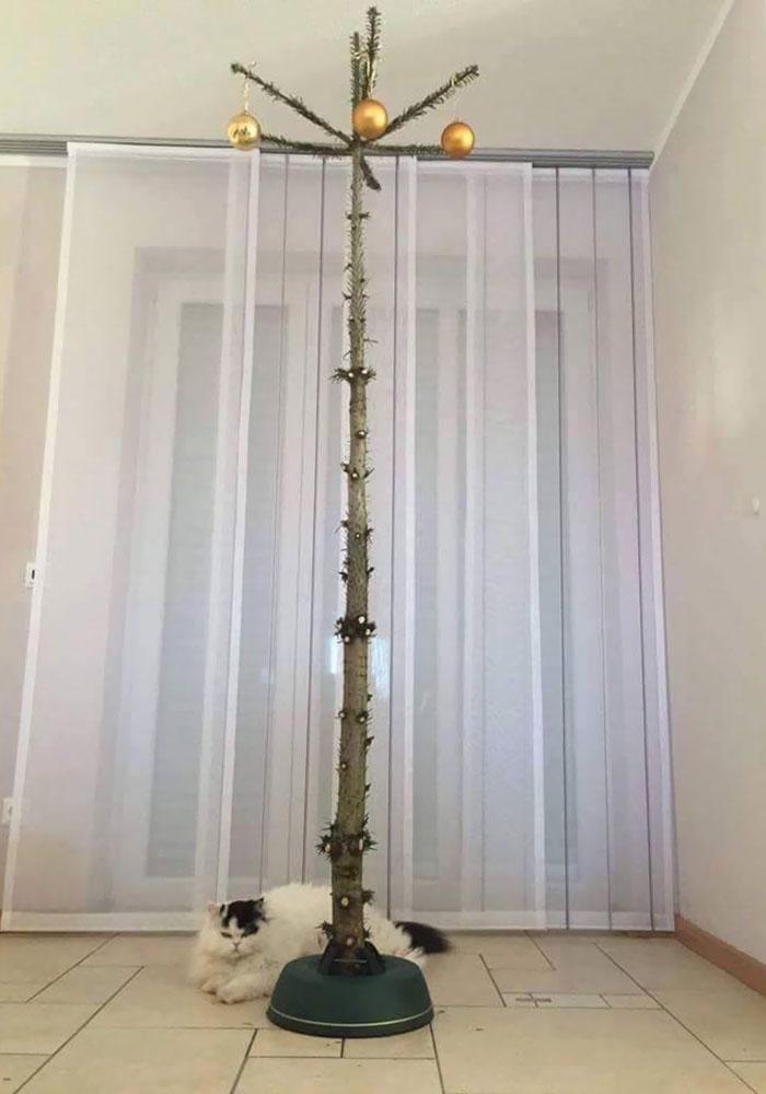 Модель елки для тех, у кого в доме кошки.
