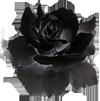 https://img-fotki.yandex.ru/get/110545/324964915.e/0_176599_6c3a0d92_orig