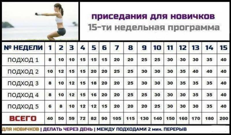 схема отжимании на 15 недель