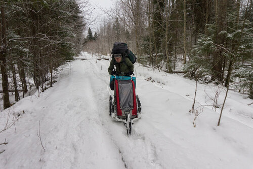 велоприцеп thule с беговым передним колесом едет по снегу