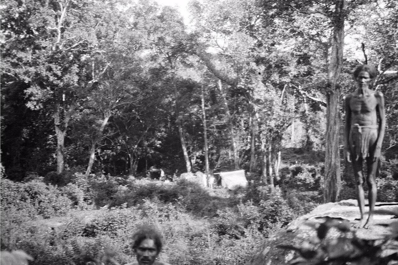 131. Хенебедде. Двое мужчин веддов в лагере экспедиции