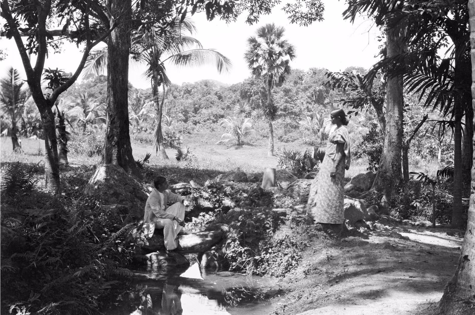 195. Окружной начальник с женой в саду Валаувуa
