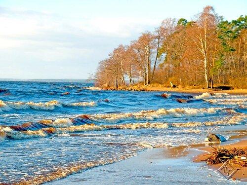 Волнуется Финский залив