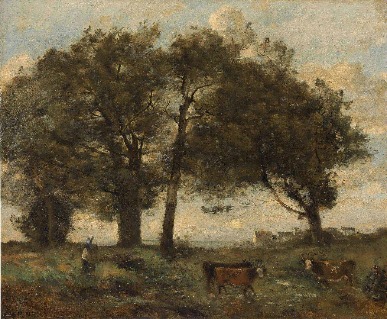 1878.jpg