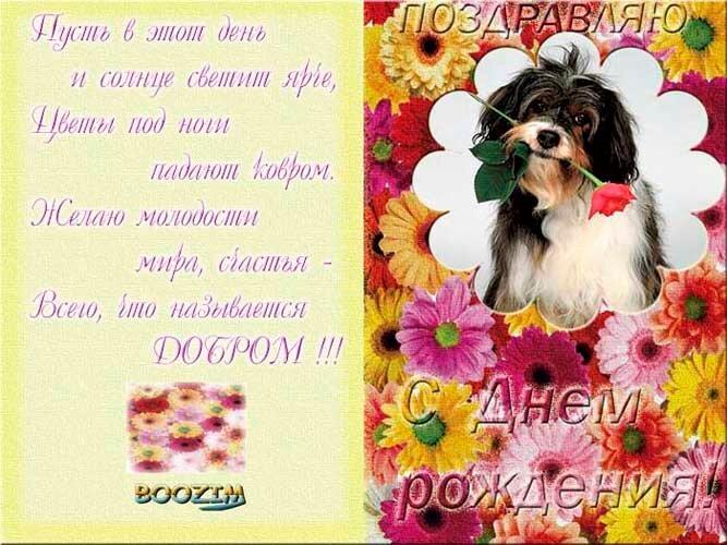 мужчина поздравление собаке с днем рождения 2 года в стихах былой эпохе, много