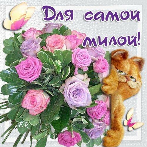 Это тебе цветы картинки красивые моя прелесть