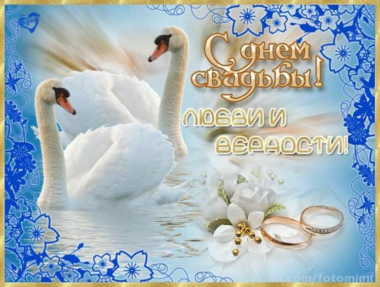 первом поздравление с бракосочетанием красивые картинки с лебедями коем случае следуй