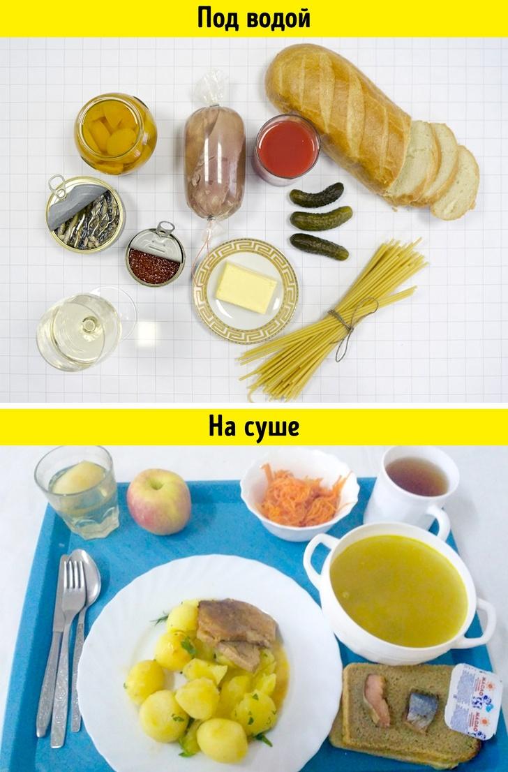 Чем кормят наработе людей повсему миру взависимости отихпрофессии (21 фото)