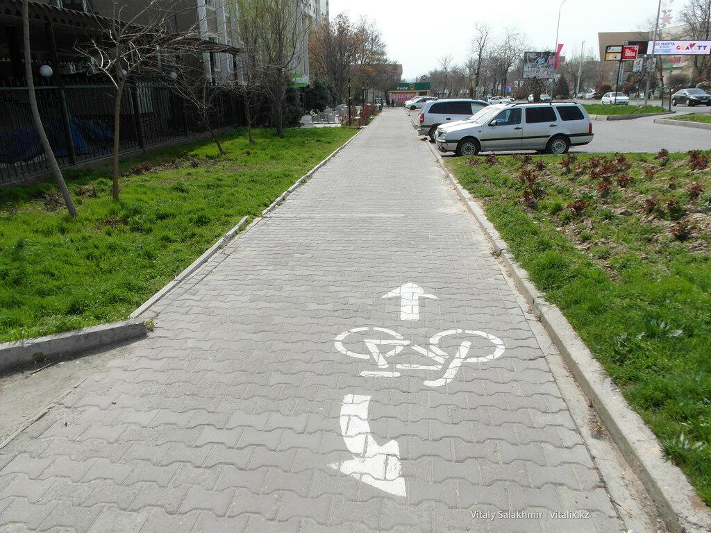 Велодорожка в Шымкенте