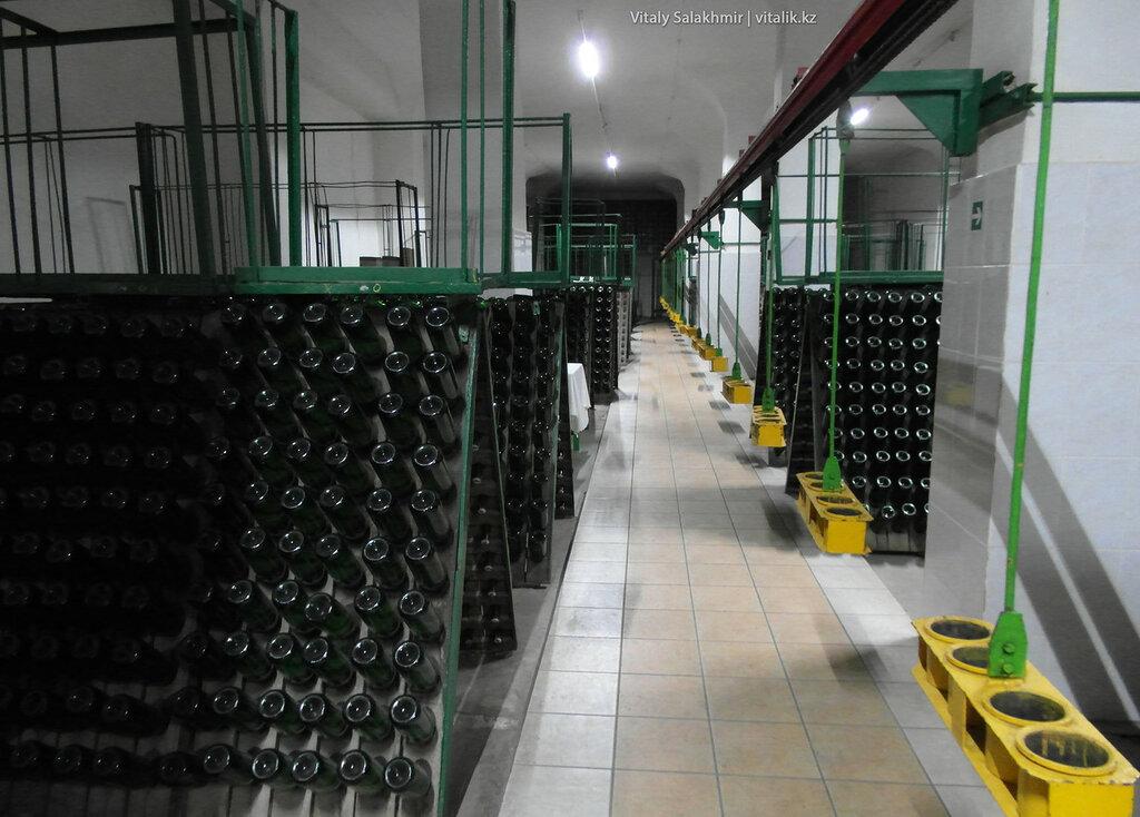 Производство шампанского на заводе Бахус в Алматы