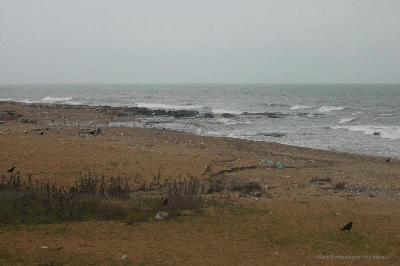 Каспийское море, 14 декабря 2017 года