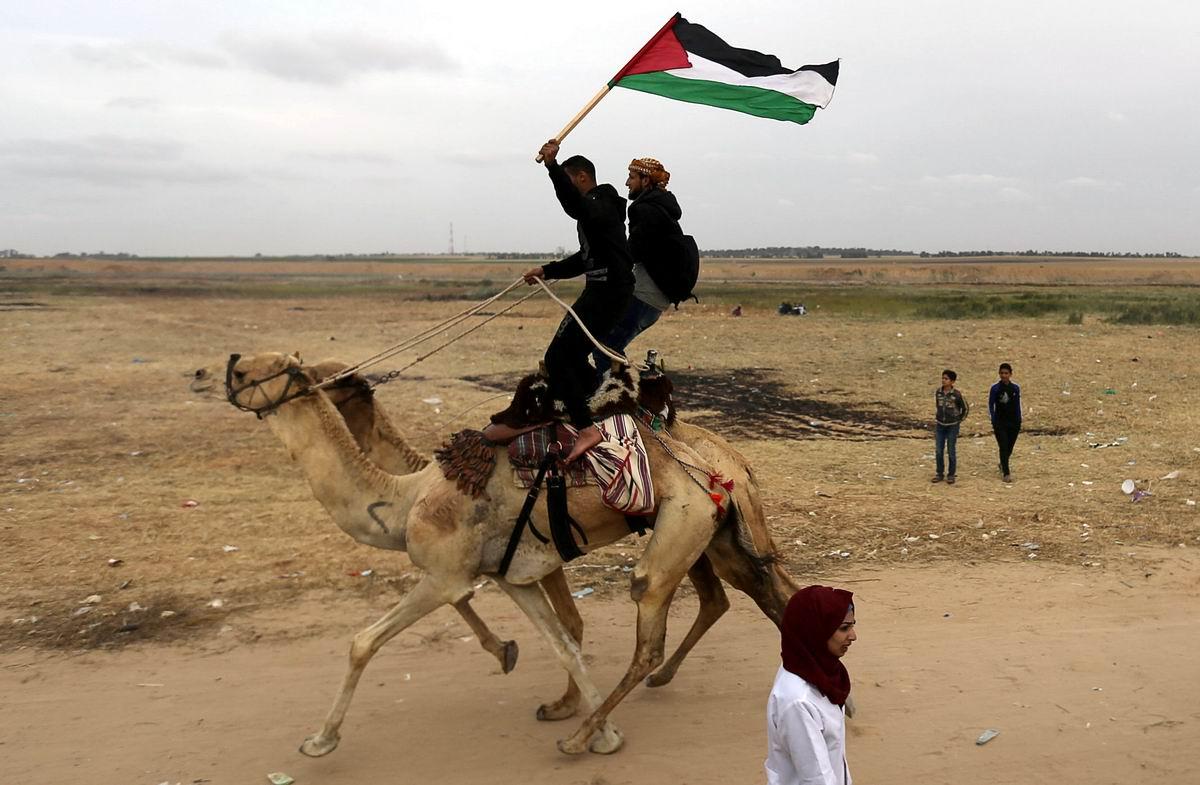 Хей, гоп, мы переходим на галоп: Лихие палестинские кавалеристы